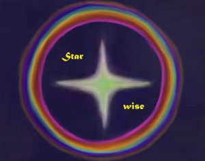 logo-star-wise